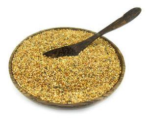 Kiwicha o amaranto