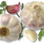 Propiedades, Precauciones y Efectos Secundarios de las Plantas Medicinales