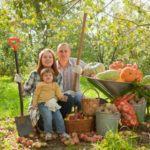 Productos orgánicos, mejores que convencionales