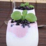 Beneficios de tomar Yogurt Natural en casa