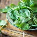 Alimentos con Calorías Negativas: ¿Mito o Realidad?