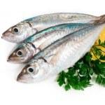 No excluyas al Pescado de tu Dieta